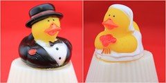 Bride & Groom Duck on Soap $4.00 each (Clelian Heights) Tags: cleliancenter cleliansoaps unscented soaps rubberducky bride groom wedding marriage heart decorativesoaps