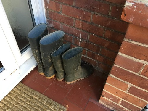 Wellies in Porch