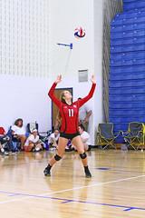 IMG_3030 (SJH Foto) Tags: girls volleyball high school mount olive mt team tween teen teenager varsity serve burst mode