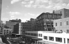 High Line NYC (je245) Tags: leicam6 leicasummicron35mmf20i kodak px125 diafine