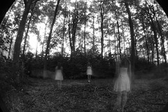 In the forest (Ollie Barr) Tags: trees white black forest canon long exposure ghost fisheye ghostly 550d