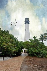 Cape Florida Lighthouse (a little bit further) (Nancy Violeta Velez) Tags: lighthouse texture beach photography interesting flickr keybiscayne motat nikkor18200 billbaggsstatepark capefloridalighthouse tatot clivesax nikond5000 skeletalmessbrushes floridasparks nancyvioletavelez~photographicart lighthouseandcottagebuiltin1825