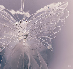 Delicate - Weekly Challenge (charlottz - Charlotte G Photography) Tags: light white angel nikon ribbons sparkle fairy coolpix delicate essex challenge sheer p510
