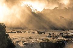 just like a dream (Thiago Marra) Tags: trees water fog waterfall rocks steam rapids iguassufalls cataratasdoiguaçu ef70300mmf456lisusm