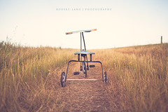 A childs old tricycle on farm track, Australia (Robert Lang Photography) Tags: grass sunshine bike rural toy golden track farm tricycle seat wheels australia nopeople nostalgia trike southaustralia handlebars 3wheels eyrepeninsula