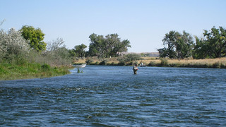 Montana Fishing Lodge - Bighorn River 8