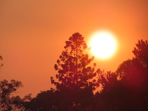A SPRING SUNRISE