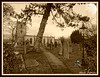 SPOOKY GRAVEYARD (vicki127.) Tags: halloween church graveyard sepia derbyshire peakdistrict vicki castleton burrows digitalcameraclub flickraward ilovemypics piicnik ringexcellence fujifilmfinepixf300exr vicki127