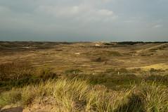20121031-_DSC1117.jpg (Jan de Graaf) Tags: nature nikon natuur landschap infocus highquality d5000 noordhollandsduinreservaat nikond5000 jandegraaf jdegraaf