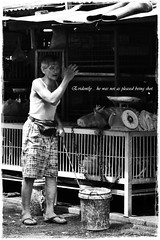 Chicken Man Not So Pleased (J2Kfm) Tags: bw photography market streetfood ipoh perak pasirputeh
