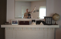Over here, Macduff! (.:Chelsea Dagger:.) Tags: ohio cat book globe fireplace published candle cleveland clevelandohio comedian local scottishfold lakewood mantle publisher chelseadagger grayco chelseakaliwhatever mikepolk cmckeephotography damnrightimfromcleveland chelseamckee mikepolkjr