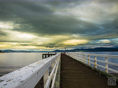 (atogdude) Tags: bridge sunset sea gloomy cloudy olympus wellington suburb zuiko seatoun lightroom leadingline e520 magnificentcreation atogdude