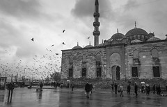 "Yenicami (Eminonu-Istanbul) (OCEANIABLU ""ATTENTION TO CLAUDIA DEA ! SHE STEALS ) Tags: bw fish turkey fisherman december child turkiye noel istanbul mosque bn cami natale dicembre cocuk bosphorus capodanno pescatore"