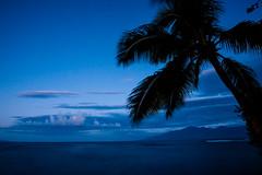 First Light in Hawaii (MichellePhotos2) Tags: ocean morning blue mountains tree silhouette clouds hawaii twilight nikon maui palm pacificocean palmtree kapalua westmaui malokai d800e nikond800e