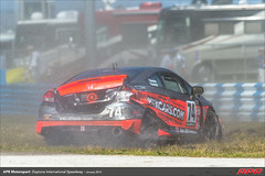DIS-CTSCC-Race-2013201