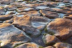 Puddles (Kara_Moore) Tags: uk sea seaweed beach water wales sunrise d50 nikon rocks floor stones cymru ground nikond50 dslr puddles valeofglamorgan rhoose rhoosepoint