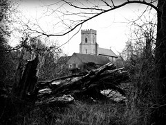 St Nicolas' Church (gill harle) Tags: monochrome witham week5 stnicolaschurch 52in2013