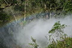 Vapor do trem (Mrcio100) Tags: santa brasil maria ponte trem catarina vapor passeio fumaa locomotiva apina abpf