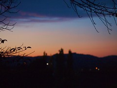 Sunset 20141006 (caligula1995) Tags: 2014 bokeh plumtree sunset