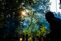 Centre d'Aventure Mattawin (MichelGurin) Tags: 2016 canada centredaventuremattawin et exterior extrieur faune lightroomcc michelgurin nikon nikon2470 photographie photography pleinair qc qubec troisrives arbres tree cotentes saintrochdemkinac ca mauricie