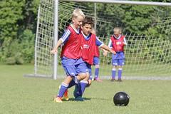 Feriencamp Neumnster 28.07.16 - b (41) (HSV-Fuballschule) Tags: hsv fussballschule feriencamp neumnster vom 2507 bis 29072016