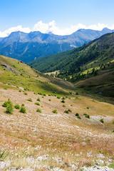 IMG_6661 (rickyrebora) Tags: col basset sauze doulx sestriere summer mountain montagna prati