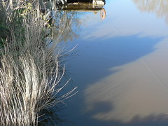 embankment - Ditzum (achatphoenix) Tags: water wasser eau aqua eastfrisia unterwegs ostfriesland ontour inpassing enroute h2o