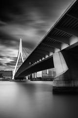 Erasmus Bridge (miguel_lorente) Tags: blacknwhite longexposure erasmus bw netherlands bridge street water architecture blackandwhite cityscape concrete bnw rotterdam city