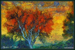 Albero dalle chiome rosse... come i capelli di Van Gogh - Agosto-2016 (agostinodascoli) Tags: alberi tramonto sunset art digitalart vangogh colore fullcolor nature texture photoshop photopainting cianciana sicilia nikon nikkor agostinodascoli piante digitalpainting