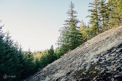 9point8-fallline-post-interbike-shoot-ajbarlas-250816-1389.jpg (a r d o r) Tags: 9point8 ajbarlas ardorphotography fallline falllineseatpost mtb mountainbike mountainbikes philszczepaniak squamish adjustableseatpost