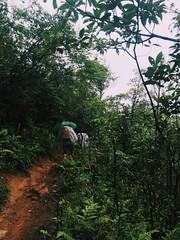 IMG_9120 (Seif Sallam) Tags: travel vietnam sapa fansipan hiking trekking