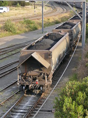 coal rear (sth475) Tags: railway railroad train freight goods wagon car freightcar rollingstock coal open bulk hopper bottomdischarge loaded nhshclass cringila yard steelworks wollongong illawarra nsw australia summer lateafternoon