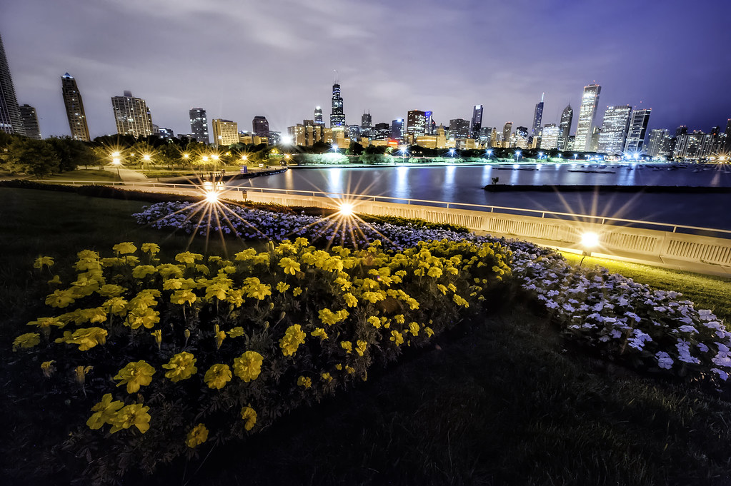 The flower bed and Chicago Skyline from the Shedd Aquarium.
