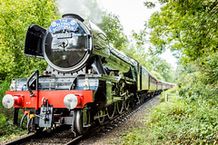 The Flying Scotsman (Liquidparadox) Tags: steam loco scotsman theflyingscotsman steamtrain northwoodhalt