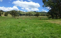 5192 Halls Creek Road-, Bendemeer NSW