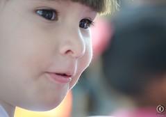 ENFOQUE (¡.LINDA.!) Tags: eye girl mini niña bonita polly pao mirada hermosa pequeña paulette chiqui pelitos vellitos