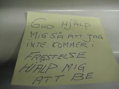 IMG_1909 (grindove) Tags: gud lapp