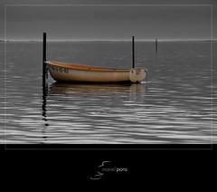 B/W & Colors (manel pons) Tags: boat barca catalunya tarragona cutou deltadelebre terresdelebre deltadelebro larapita santcarlesdelarapita manolopons manelpons elsalfacs montsi