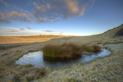 'Frozen Water' (Timster1973 - thanks for the 11 million views!) Tags: uk colour nature water southwales wales sunrise canon reeds frozen pond naturalhistory hdr highdynamicrange photomatix ystradfelte