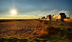 When All Is Said & Done......... (Theresa*) Tags: railroad sunset beautiful train illinois cornfield oneofakind harvest unionpacific capture creston uprr ilovetrains gointothelight flickrnature natureandlandscapes prettyfreakinsweet keleka nikond7000 postthebest beginningsends