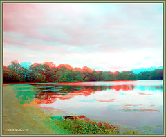 Unicorn Lake 1 (starg82343) Tags: trees lake water grass reflections outside outdoors perception stereoscopic 3d md cloudy maryland overcast anaglyph stereo contraption depth stereoscopy stereographic brianwallace unicornlake