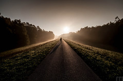 touching the void (mmmt) Tags: road autumn light shadow sun sunshine fog nikon angle wide clarity void dust nikkor duna ultra silouhette uwa d90 12244 pcsi gt bda fotkr