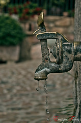 Sequia (Enrique Flores 71) Tags: españa water rustico spain agua waterdrop iron rustic fuente catalonia drought catalunya thirst source sed cataluña lleida hierro sequia espanya lerida gotadeagua peramea mygearandme