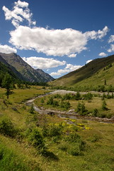 il verde in valle argentera (MILESI FEDERICO) Tags: wild panorama verde montagne nikon italia nuvole estate natura piemonte cielo azzurro colori paesaggi paesaggio cozie milesi cesana apli tamron1750 visitpiedmont valleargentera