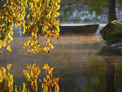 Blejsko jutro / Morning in Bled 5 (Union*) Tags: autumn lake reflection fall nature water leaves boat colours slovenia bled jezero blejsko