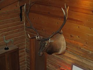 Montana Elk Hunting Lodge - Bozeman 6