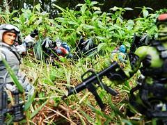 Run Through the Jungle (Dudesnbots) Tags: hit cobra n joe run jungle dudes viper airborne range gi bot dudesnbots
