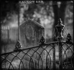 Happy Halloween!! (pixelmama) Tags: california blackandwhite bw cemetery graveyard fence columbia spooky scarey gravestone ghostly cobwebs happyhalloween ironfence pixelmama