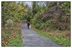 Walking the Dog (gastwa) Tags: nature landscape dc washington nikon scenery control perspective shift maryland andrew full frame fullframe fx tilt f28 45mm rockville sensor d800 tiltshift pce gastwirth d800e andrewgastwirth