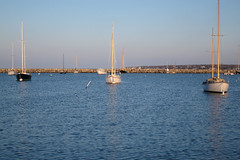 IMG_6617 (Dan Correia) Tags: marthasvineyard chappaquiddick island ocean harbor reflection boat jetty topv111